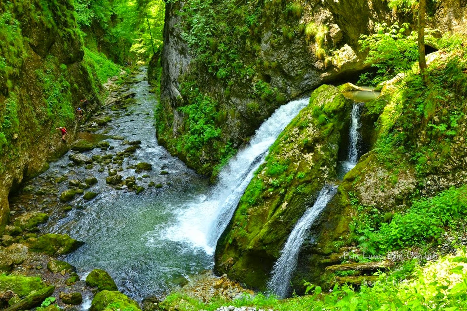 visit_apuseni_natural_park_evantai_waterfall