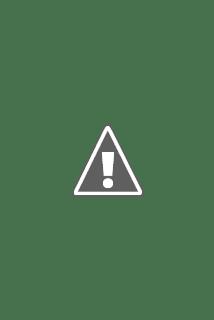 Photographie d'un Renne géant lumineux de Noël