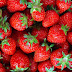 Why is it good to eat strawberries? 4 health benefits