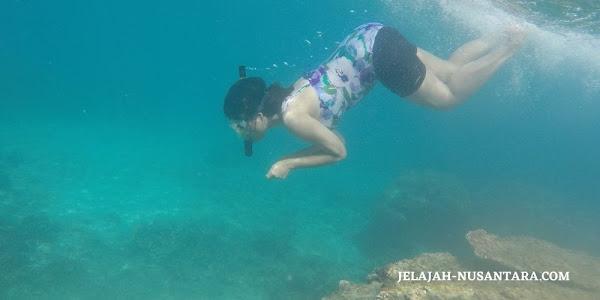 aktivitas wisata snorkeling open trip pulau peucang ujung kulon
