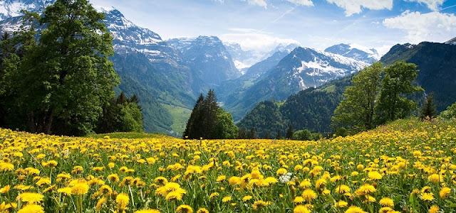 Verão na Suíça
