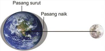 Faktor Penyebab Proses Terjadinya Pasang Surut Air Laut