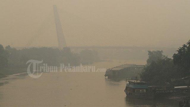 Kabut Asap Tebal di Riau, Masyarakat Diimbau untuk Gunakan Masker dan Kurangi Aktivitas di Luar