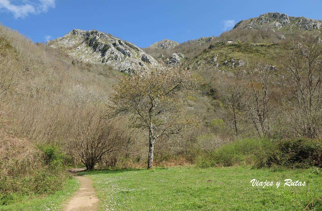 Olla de San Vicente, Asturias