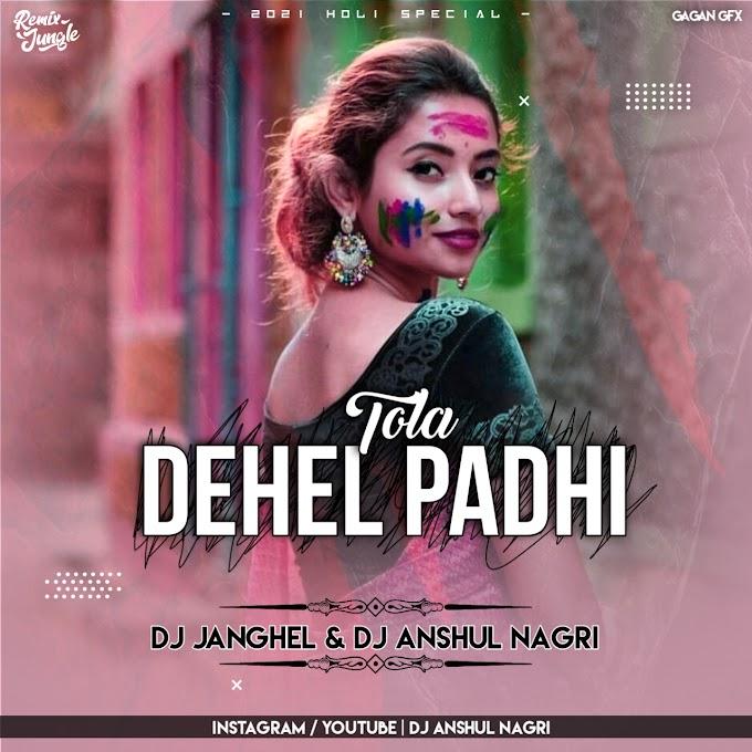 TOLA DEHEL PADHI [ REMIX ] DJ ANSHUL NAGRI x DJ JANGHEL