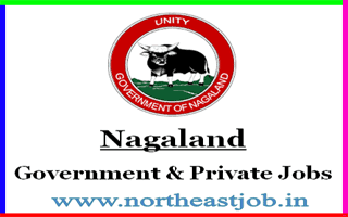 Nagaland Portal. Daily Nagaland Jobs and Career Website Advertisement