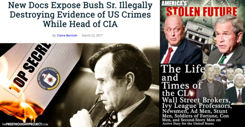 White Hats Report, Bush, Clinton, Herzog, Dewhurst, Fraud, Theft, Falcone
