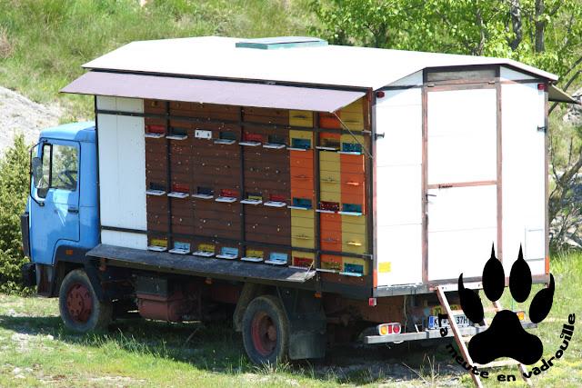 rucher-camion-beca-slovenie