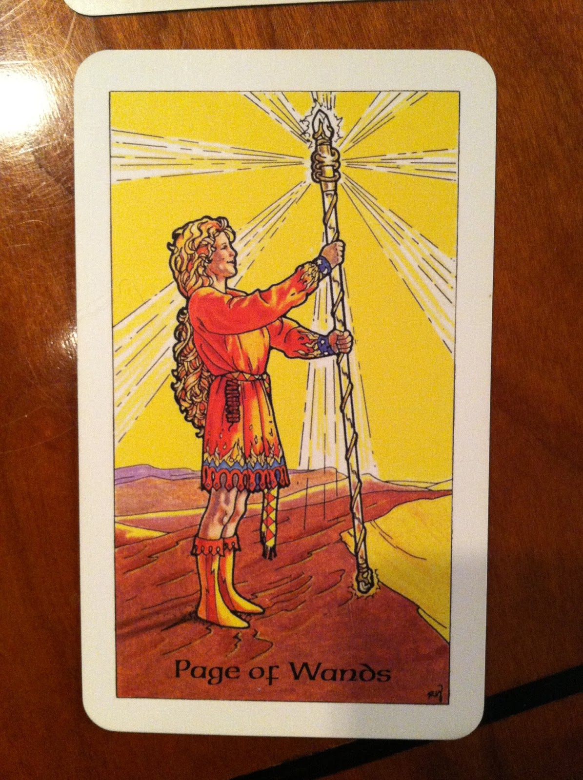 Turtlephoenix Tarot, Dreams, And Astrology: The Fire's