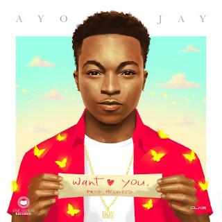Ayo Jay – Want You