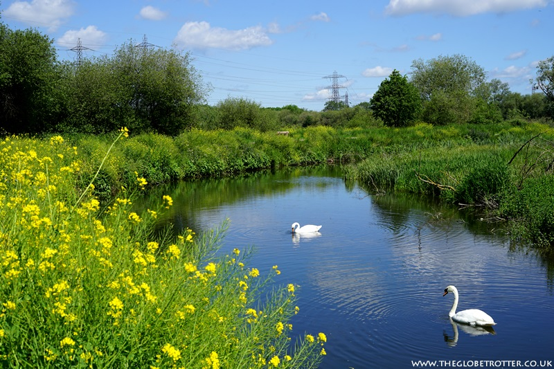 River Lee Country Park