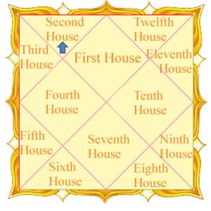 क्या होता है जन्म कुंडली में दूसरे भाव - what is second house in kundli