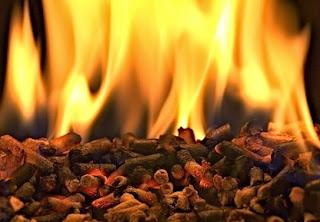 Llama biomasa - Grupo Innotec