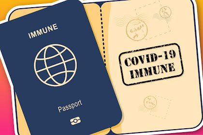 वैक्सीन पासपोर्ट क्या है?