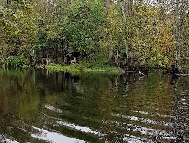 Cabana cajun em um pântano da Luisiana