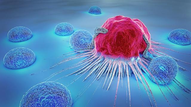 Increase immunity in the body