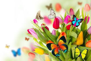 ¿Cómo Afecta la Primavera a Cada Signo?