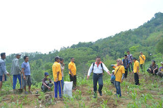 PSDAP Universitas Jember Tanam 3000 Pohon di Sucopangepok