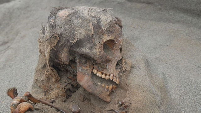 Inca child sacrifice victims came from all over the empire