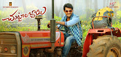Chuttalabbayi movie wallpapers-thumbnail-14