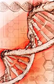 muzica genetica cum suna adn uman