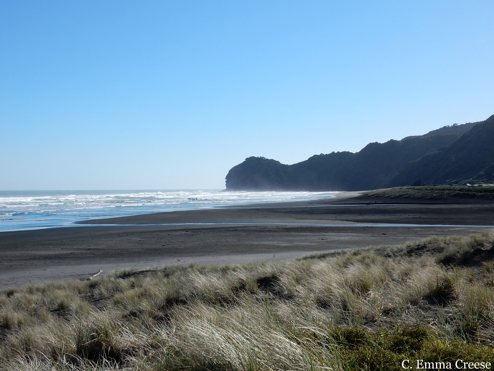 Piha Beach New Zealand Adventures of a London Kiwi