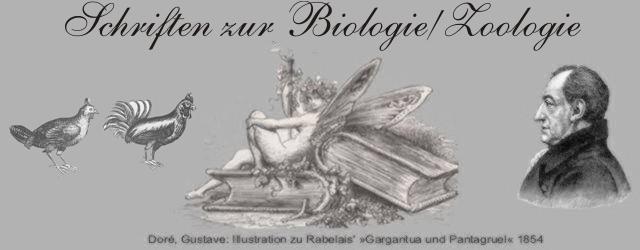 Biologie/Zoologie