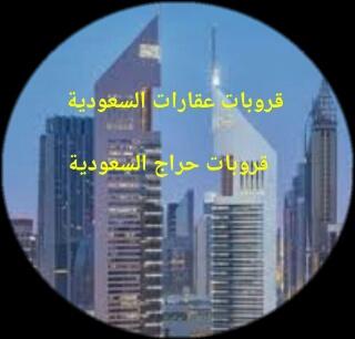 قروبات مكاتب عقارات سعودي