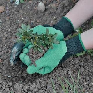 Sarung Tangan Bercocok Tanam Berkebun Ladang Kebun Gali Tanah Tanaman