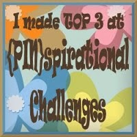 2 x {PIN}spirational Top 3