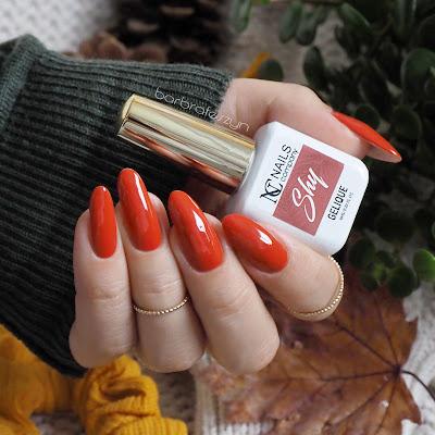 Nails Company Shy