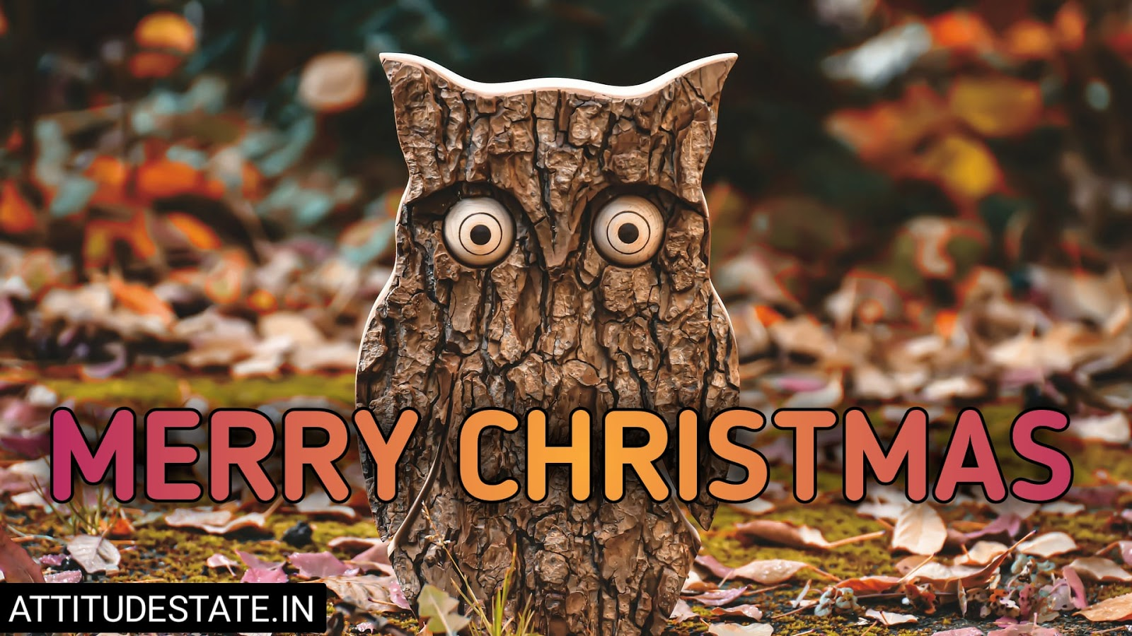 funny merry christmas images for facebook