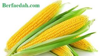 manfaat-jagung-untuk-ibu-hamil