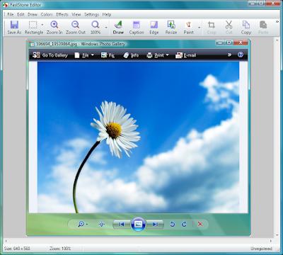 Screenshot FastStone Capture 8.8 Full Version