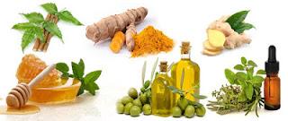 प्राकृतिक एंटीबायोटिक हर्बल रखें स्वस्थ एवं रोग मुक्त , Natural Antibiotics in Hindi, प्राकृतिक एंटीबायोटिक हर्बल, prakritik antibiotics, प्राकृतिक एंटीबायोटिक्स, Natural Antibiotics ,  नेचुरल एंटीबायोटिक्स