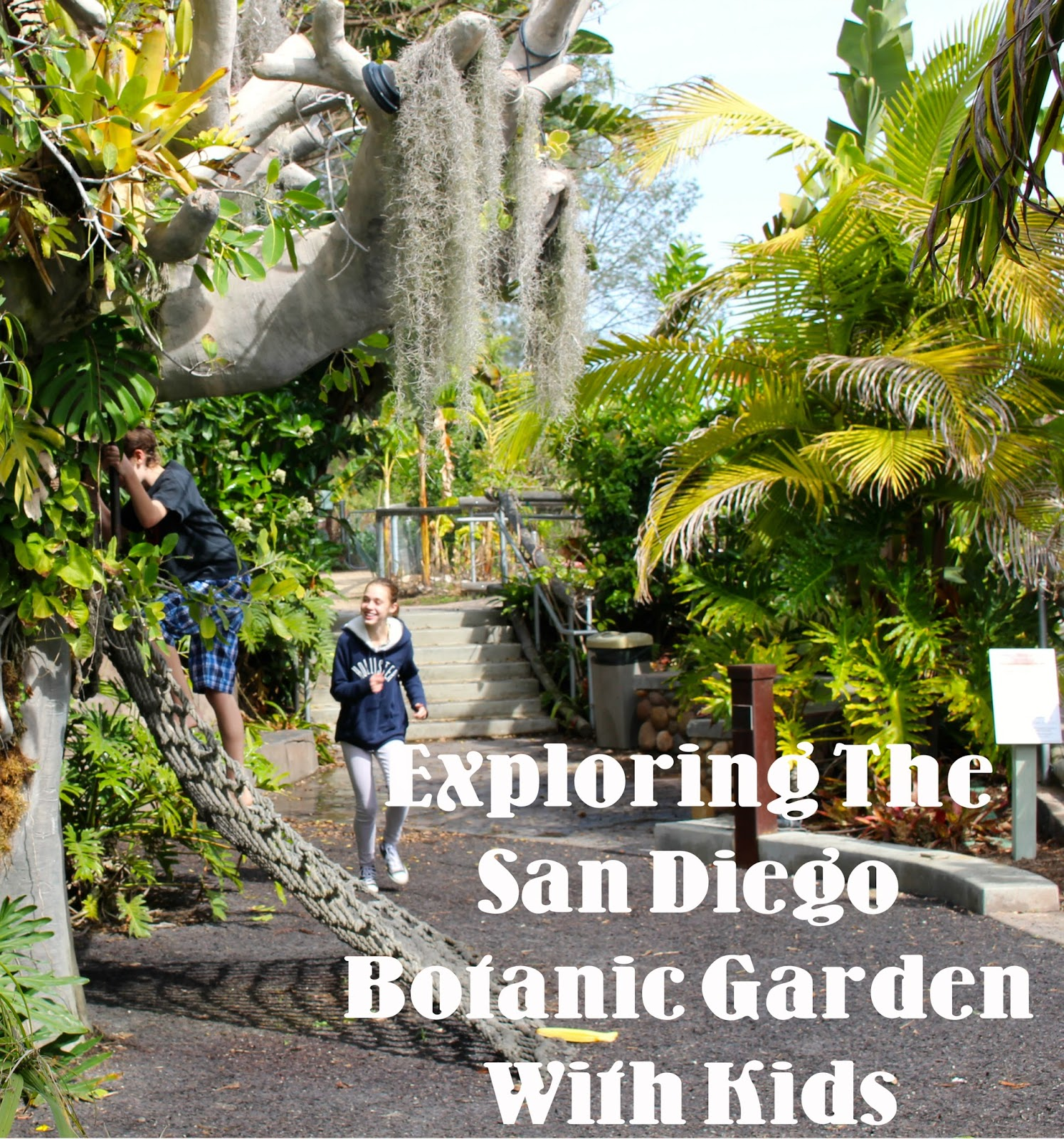 Have You Ever Wondered If A Botanic Garden Could Be Fun For Kids? One Of  Southern California And San Diegou0027s Lushest Botanic Gardens Is Located In  In The ...