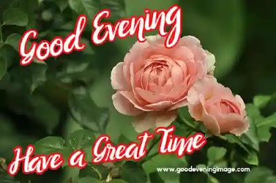 Good Evening Rose Love images