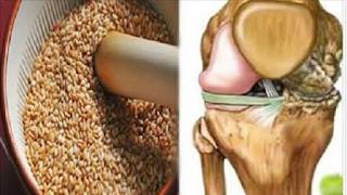 Ποιοι είναι οι σπόροι που αναγεννούν τους τένοντες & εξαφανίζουν τους πόνους στα γόνατα!