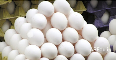 Changes in egg supply. In MDM