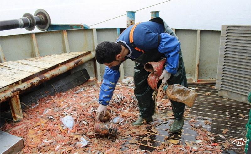 Ψαράδες μάζεψαν πάνω από 12 τόνους σκουπιδιών στο Βόρειο Αιγαίο