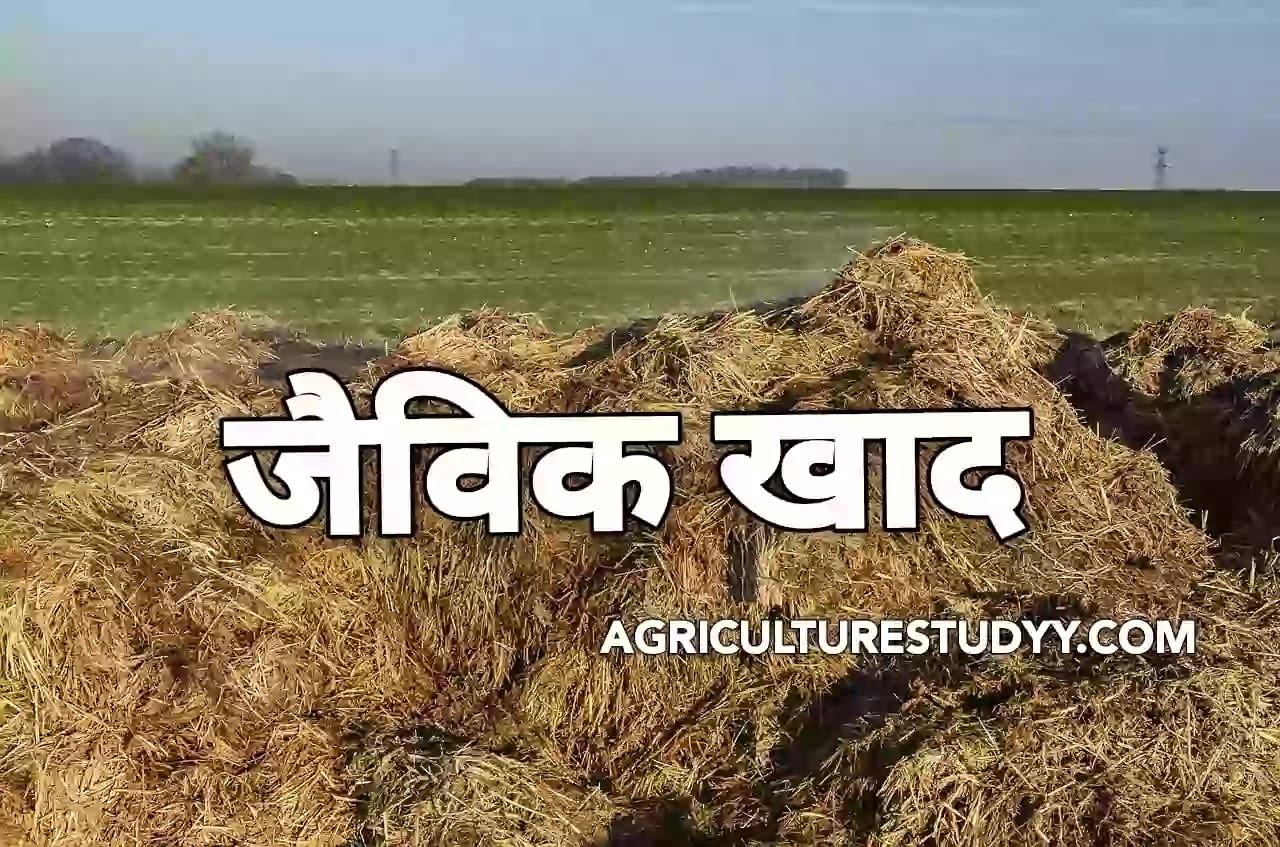 जैविक खाद क्या है (organic manure in hindi) यह कितने प्रकार की होती है एवं कृषि में इसका क्या महत्व है