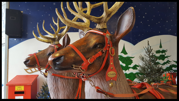 Rudolph at Drusillas