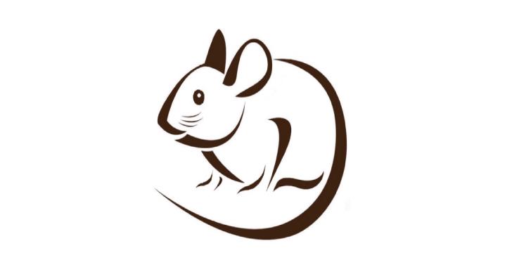 Mouse : iOS & macOS Post-Exploitation Framework