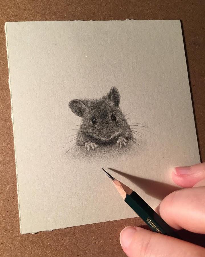08-Little-field-mouse-Katrin-Berge-www-designstack-co