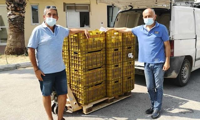 """Δωρεά φρούτων από την εταιρεία """"Φραγκίστας¨ στο Νοσοκομείο Ναυπλίου"""