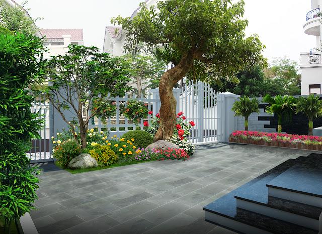 Thiết kế thi công sân vườn đẹp 3
