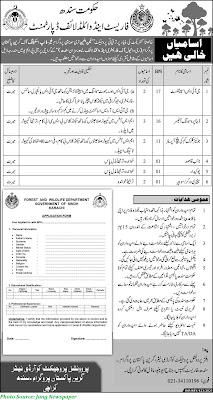 Forest and Wildlife Department Govt of Sindh Jobs 2021 Download Application forms