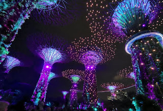 Supertree Groove, Garden Rhapsody. Gardens by the Bay o Jardines de la Bahía, Singapur o Singapore.