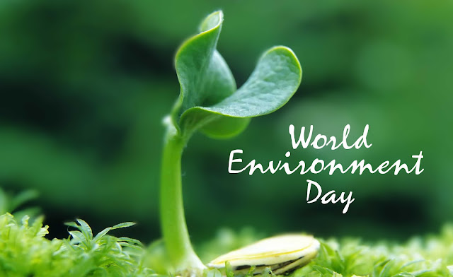 quotes on environment protection