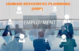 Tujuan Perencanaan Sumber Daya Manusia (Human Resources Planning)